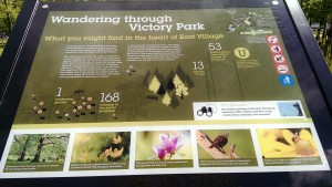 Nature trail Victory Park_MotheringMushroom